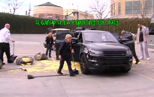 cleanup rudy