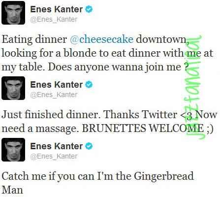 enes gingerbread